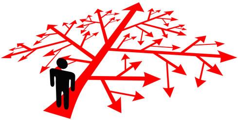 gouvernance d'entreprises et d'organisations et maîtrise de projets complexes